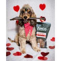 Anco Valentine's Treat Bag