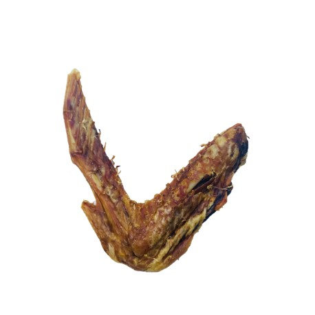 Duck Wing